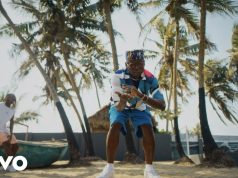 "DJ Spinall ft. Fireboy DML – ""Sere"" Music Video"