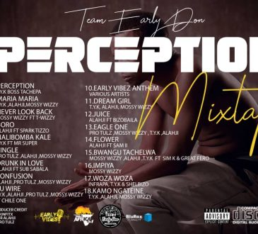 DOWNLOAD Team Early Don - 'PERCEPTION' EP